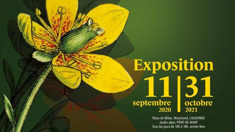 affiche exposition Trésor végétal Musée et jardin botanique Vaud