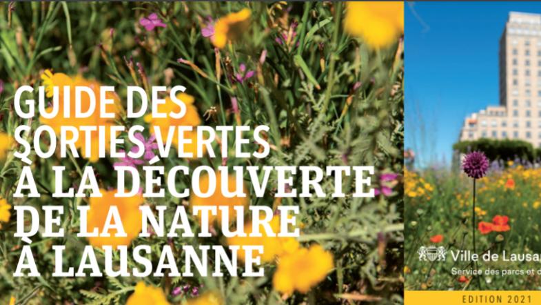 Fleurs colorées et ville de Lausanne