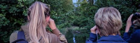 Drei Beobachterinnen blicken mit Feldstechern von einer Brücke in Richtung eines Bachs in den Wald.