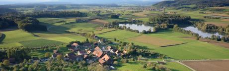 Blick über eine grüne Landschaft des Thurgaus