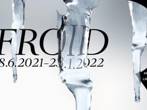 Affiche de l'exposition FROID du Palais de Rumine