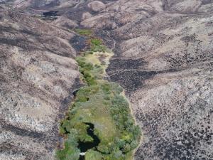 Baugh Creek, Idaho - ein grünes Flusstal wirkt als Feuerschutz